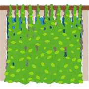 green_midori_curtain